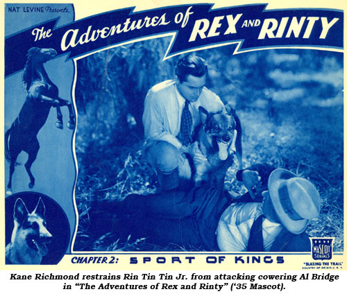 "Kane Richmond restrains Rin Tin Tin Jr. from attacking cowering Al Bridge in ""The Adventures of Rex and Rinty"" ('35 Mascot)."
