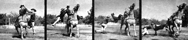 All these photos are from PARADE, the Sunday newspaper supplement, from March 22, 1953. The color photo was on the cover showing Jock Mahoney bulldogging Dick Jones from his horse. The first strip of photos shows Dickie doing a croupier mount and Jocko doing a fork jump over the horse's neck into the saddle. The second group of photos shows Jocko coming at Dickie from his left side and bulldogging him off the horse.
